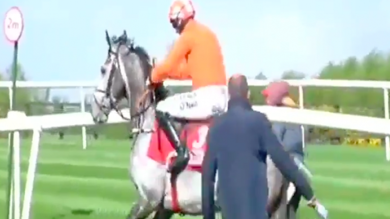 WATCH: Punters enraged as Cheltenham champion refuses to race at Punchestown