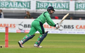 Those who nurtured Irish cricket deserved this week of recognition, but there are many great days still to come