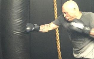 Joe Rogan reveals the diet and training plan that keeps him so shredded