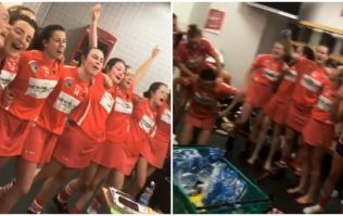 Cork's changing room celebrations sum up what they just did