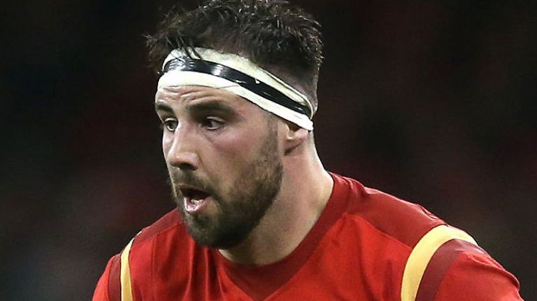 """Stupid"" Welsh rugby star misses game after being bitten by a lion"