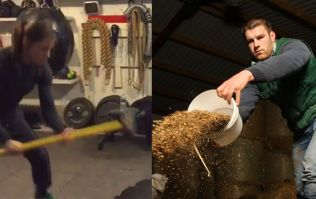 WATCH: Sean O'Brien spots agricultural opportunity in Katie Taylor's impressive training routine