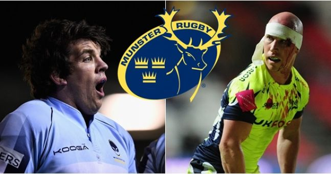 Munster, Donncha O'Callaghan and Peter Stringer have been paid the ultimate compliment