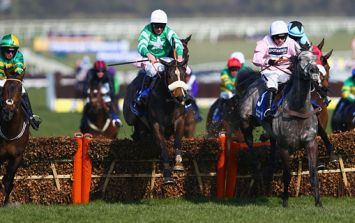 Your top tips for the opening day of Cheltenham from Hayley O'Connor of Ladbrokes