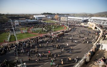 These are the tips you need for Day 3 of Cheltenham