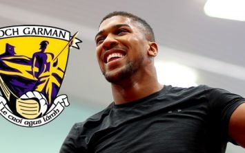 Golden boy of Wexford hurling shows Anthony Joshua how to REALLY spar