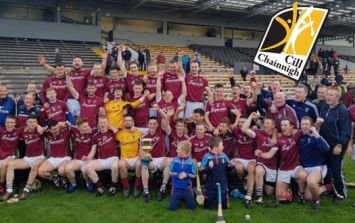 Ballyragget are Leinster champions after surviving huge scare from 16/1 outsiders Glenealy