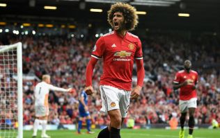 Marouane Fellaini says he has been unfairly painted as a 'murderer' in English football