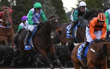 Animal rights group PETA call for ITV to stop broadcasting the Grand National