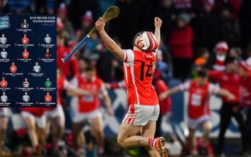 Three notable absentees from Club Hurling Team of the Year