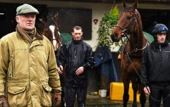 If you're looking for a summer job in Carlow, Willie Mullins is your man