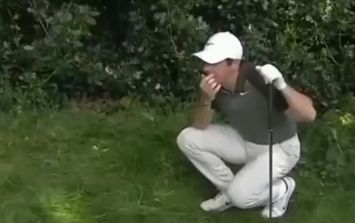 Rory McIlroy nails spectator with shot from the trees at PGA Championship