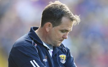 The odds for Wexford to beat Kilkenny will not please Davy Fitzgerald