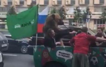 Bear plays vuvuzela in traffic as World Cup gets underway