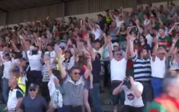 The euphoric reaction in the stands to Kildare's win over Mayo in Newbridge