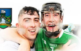 Limerick beat Kilkenny at their own game and that's why they should be feared
