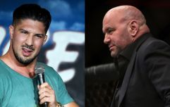 Brendan Schaub makes very compelling argument for UFC moving on without Dana White