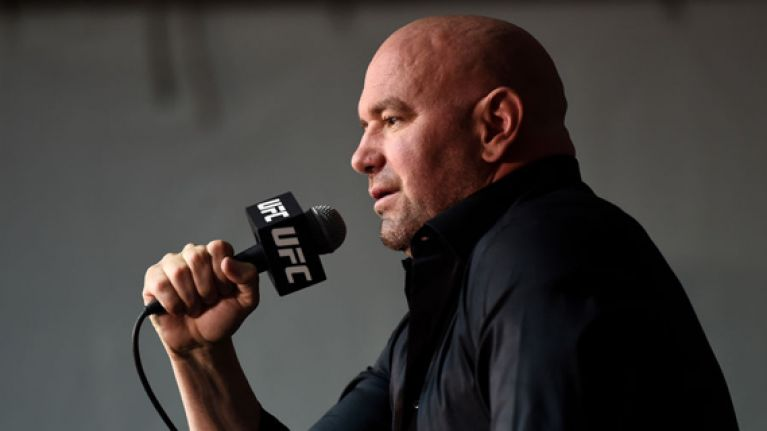 Dana White tries to humiliate Brendan Schaub with remarkably insulting rant