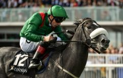 Galway Races: Day 6 runners and riders