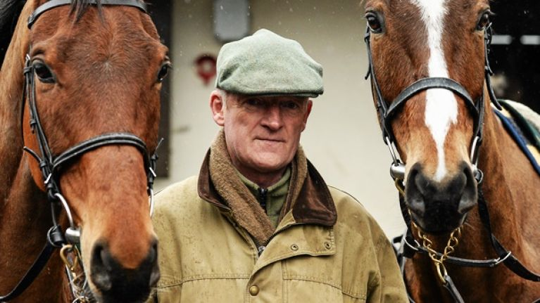 cc286c5a58f0 Stuck for work down around Carlow this winter  Willie Mullins has your back