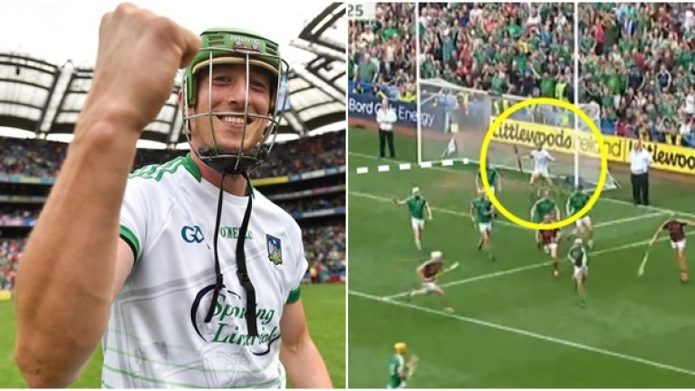 Nickie Quaid's reaction at the final whistle spoke for all of Limerick