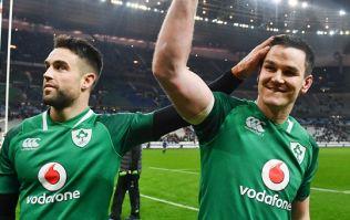Ireland's 2019 World Cup warm ups confirmed, including Aviva Stadium send-off