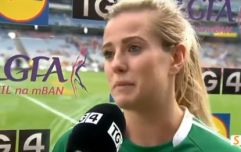 Limerick hero's passionate post match interview sums up how much All-Ireland win meant