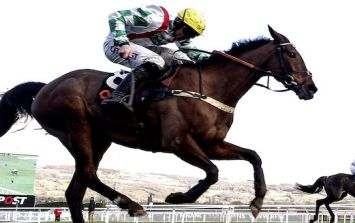 Ruby Walsh won't race at Listowel with nasty-sounding injury