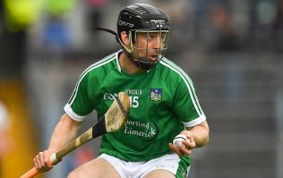 Two Limerick men hard done by as Hurler of the Year and Young Hurler nominees announced