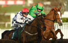 Patrick Mullins wins ride of the season at McCoy Awards after Cheltenham Festival win