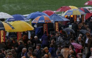 Arse-saver for Cheltenham punters already as Sky Bet serve up Non-Runner No Bet treat
