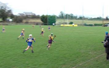 WATCH: Wexford camógs rattle the net with team goal as slick as you'll see anywhere