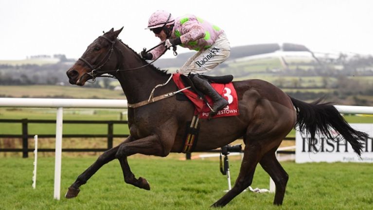 Mullins-Ricci novice hurdler set for Punchestown showdown with redemption-seeking Mengli Khan