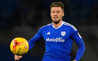 Anthony Pilkington scores first goal since August as Cardiff City thump sorry Sunderland