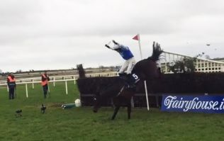 Paul Townend calls two cabs, somehow stays on board and wins race