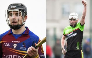 UL are red hot favourites but IT Carlow are worth a bet for Fitzgibbon Cup