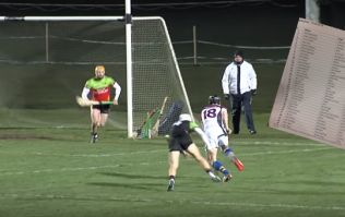 UL's star power shines through in defence-blitzing Fitzgibbon Cup victory over IT Carlow