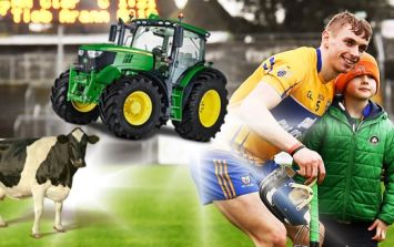 The benefits and hindrances for GAA playing farmers as Clare star McInerney reaps the rewards