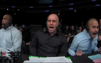Joe Rogan's reaction to Frankie Edgar's first knockout loss really said it all