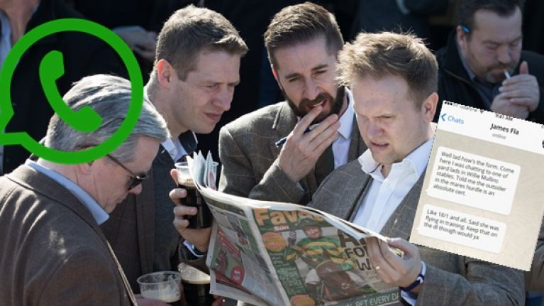 9 ways to spot a spoof who lets on to be a Cheltenham expert