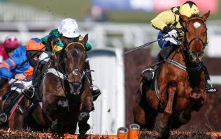 The 12/1 treble that could land you the big bucks in Cheltenham today