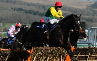 The tasty Cheltenham treble you should be on for 11/1 today