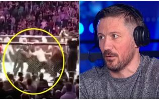 John Kavanagh also took a smack during UFC 229 meleé