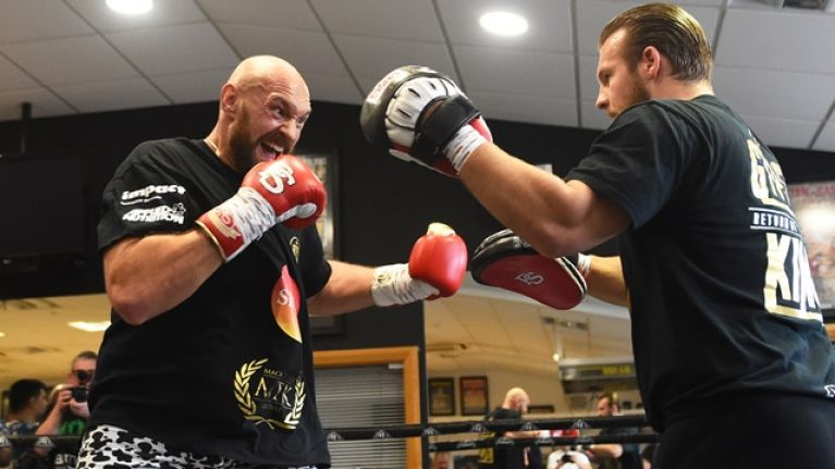Tyson Fury's trainer rejects rumour of sparring knockout