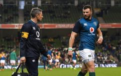 Ireland dealt two big injury blows ahead of New Zealand game