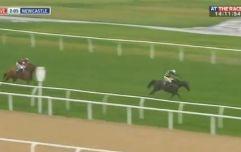Samcro beaten again as Buveur D'Air bosses it
