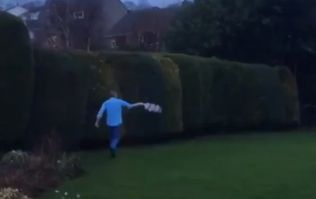 Leeds' late comeback sends fan into lap of his garden