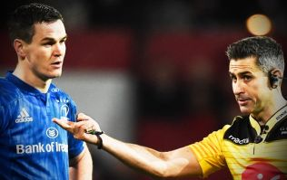 Johnny Sexton insists he had only one major complaint with referee last night