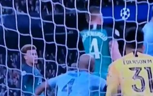The angle that shows Fernando Llorente's goal did touch his arm