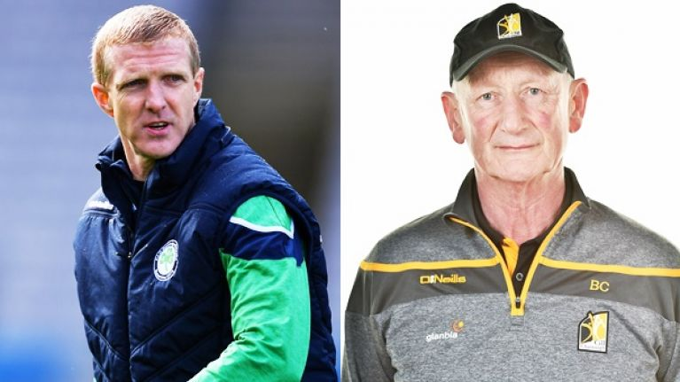 Shefflin happy where he is and not entertaining disrespectful 'Cody's successor' talk